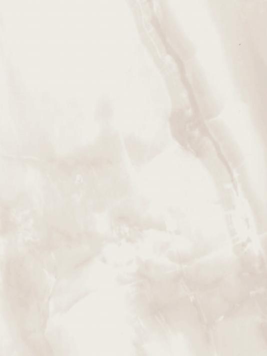 FL001 Ariana Marble Warm Classics - Flooring Collection